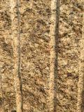 Countertop van het Graniet van de Plak van de keuken Nieuwe Venetiaanse Gouden PrefabKleuren