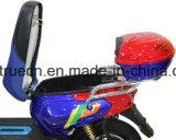 Motorino elettrico con la forcella anteriore della lega di Al