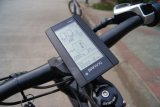 Bici eléctrica de la suspensión de la MEDIADOS DE del mecanismo impulsor 750W montaña gorda llena del neumático