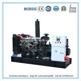 20kVA diesel die Generator door Yangdong Engine wordt aangedreven