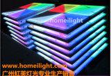 Comitato Dance Floor acrilico, RGB Dance Floor del LED per il partito della fase di cerimonia nuziale di esposizione della T-Fase