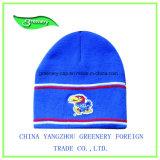 新しい方法青い刺繍のWniterの帽子の帽子