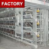 Vente de cage de couche de poulet de batterie de ferme de poulet pour la ferme du Pakistan