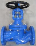 De Klep van de Bol van de Blaasbalgen van het Gietijzer van DIN (WJ41H-16)