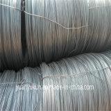 Haute résistance faiblement Fil machine en acier au carbone 1008b