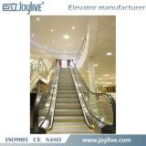 Levage de largeur de l'ascenseur 1000mm de promenade de Woving de levage de convoyeur de passager