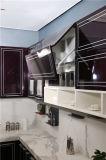 Welbom moderner hoher glatter Küche-UVschrank 2016