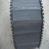 De Transportband van het roestvrij staal