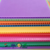 Strato di cartone corrugato di plastica variopinto della cavità pp