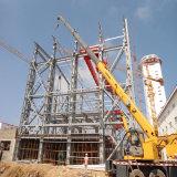 Gruppo di lavoro elaborante a più strati della struttura d'acciaio