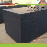 1200 * 2400mm Phenolic WBP F17 Black Film Faced Plywood
