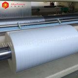 Fabricados en China transparente película Hologarphic