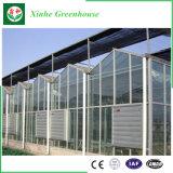 Estufa agricultural da folha do policarbonato para o vegetal e o jardim