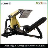 版Loaed MachineかGym Strength/45 Degree Decline Leg Press
