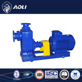 Grande Auto-Priming di Capacity Cast Iron 5m Water Pump