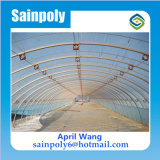 Alta calidad invernadero de plástico con película de Plantas