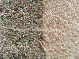 Éjecteur 2046 national de brevet de Pixel de trieuse de couleur de riz
