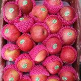 Vendita calda! Qinguan rosso fresco Apple