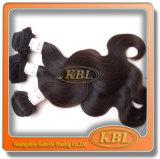 Kblから編む卸し業者のマレーシアの毛