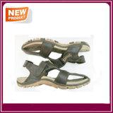 Neue Form-bereift flaches Strand-Sandelholz heißen Verkauf