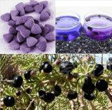 Comida sana, el 100% Wolfberry negro salvaje natural/tablilla masticable china de Wolfberry, rey de las antocianinas, anticáncer, antienvejecedoras, Wolfberry/níspero