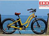 리튬 건전지와 바닷가 Serise 전기 자전거