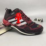 El anuncio Terrex de las originales alza el maratón Flyknit de los zapatos de los deportes