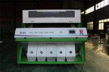 Аграрная оптически сортировщица цвета фасолей сортируя машины с ценой по прейскуранту завода-изготовителя