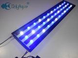 108W 90cm Brigdelux LED luz del acuario para los Arrecifes de Coral