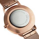 새로 디자인 스테인리스 Elegent 숙녀 쿼트 손목 시계