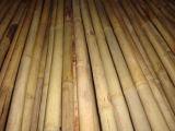유기 물질 Tonkin 처리되지 않는 대나무 폴란드