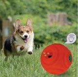 El primer balanceo Dispensar-Chirriante Lanzar-Interactivo global de la bola y del convite de los juguetes del perro de los sonidos trata grande Bola-Anaranjado