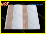 Belüftung-Abstellgleis-Platten-Strangpresßling-Zeile (JG)