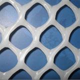 La Cina ha sperimentato il fornitore di rete di plastica (ZDPN)