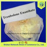 99% de pó crua de esteróides USP31 Parabolan 10161-33-8 Enanthate de trenbolona