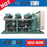 물 (공기) 단위를 압축하는 감기 & 냉장고 룸을%s 냉각된 압축 단위 Bitzer 압축기 물 Cooledracks
