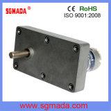 Motor eléctrico micro del cepillo de las piezas