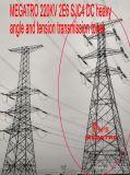 Megatro 220кв 2e6 Sjc4 постоянного тока тяжелых под углом и натяжение ремня трансмиссии в корпусе Tower
