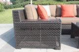 0215 conjuntos profundos de lujo de la conversación del patio del asiento con el amortiguador de Sunbrella