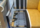 Canapé de laminage personnalisés des attaches à ressort en zigzag pour Sofa (001)