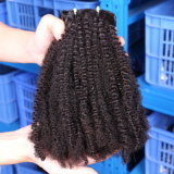 100%年のバージンの人間の毛髪の拡張自然なカールのCoilyブラジルのRemyの自然な毛