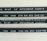 La norme DIN EN 853 R1/1sn flexible d'huile haute pression