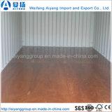 ABS/Fscの証明書が付いている高品質の容器の床