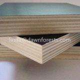 Las marcas de oro de la construcción de madera contrachapada Frente Negro/marrón Film