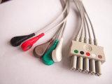 Cavo del circuito di collegamento ECG della Siemens Snap&Clip 10pin 3&5