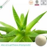 200: 1 Aloe Freeze em pó seco / extrato de aloe vera