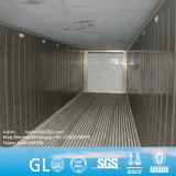 Daikin, Thermoking, le transporteur 10 pieds de 20 ft 40FT Reefer conteneur frigorifique