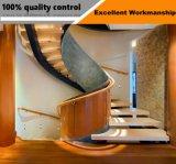 Diodo emissor de luz que flutua a escadaria de madeira com a balaustrada de vidro do aço inoxidável dos trilhos