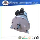Reductor de velocidad del motor eléctrico de baja velocidad de la CA 220V Fabricado en China