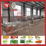 야채 또는 과일 청소 기계 열기 세척 장비